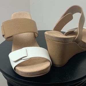 CL by Laundry Women's Team Player Soft Wed